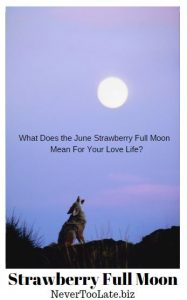 Strawberry Full Moon - wolf howling at full moon